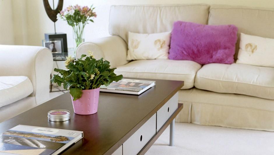 Naredi svoj dom še prijetnejši (foto: John Bouchier/Getty Images/Red Cover Rm)