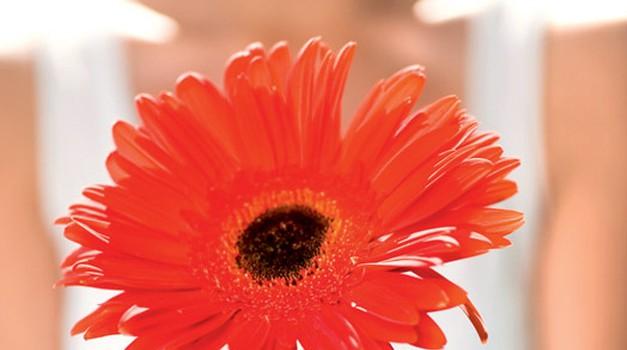 Danes posadim rožico, jutri pa še drevo. (foto: www.shutterstock.com)