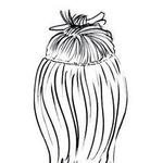 Podaljške oblikuj (skodraj ali zravnaj). Oddeli vodoravno prečko, ki iz ene strani glave do druge teče dva prsta nad ušesi. Lase na kroni dvigni in spni. (foto: Jeffrey Westbrook/Studio D, Arthur Belebeau, Ilustracije: Stuart Mckenzie/eyecandy.co.uk)