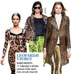Modni trend: Barve, črte in oblike