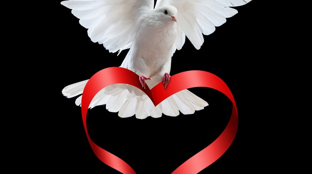 Gregg Braden: Svet spreminjajo ljudje, ki obvladajo govorico srca (foto: shutterstock)