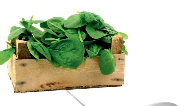 Naj kuharski blogi (foto: Shutterstock)