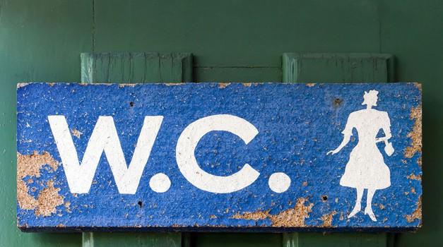 Javna stranišča ... leglo bacilov (foto: Shutterstock)