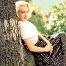 Michelle Williams kot Marilyn Monroe v filmu moj teden z Marilyn
