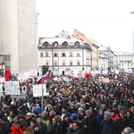 Fotogalerija s 3. vseslovenske vstaje v Ljubljani (foto: Goran Antley)