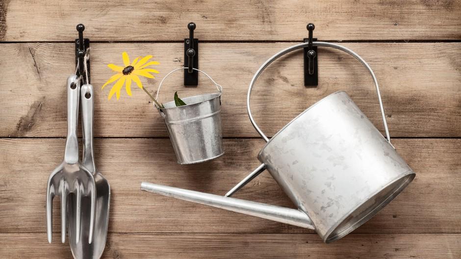 Tvoj mali vrt - pa naj je gredica ali lončnica! (foto: shutterstock)