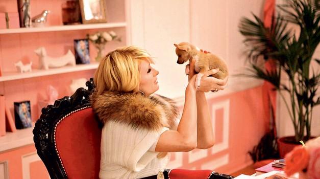 Paris Hilton: Rada bi se znebila slave (foto: Shutterstock, Universal Pictures)