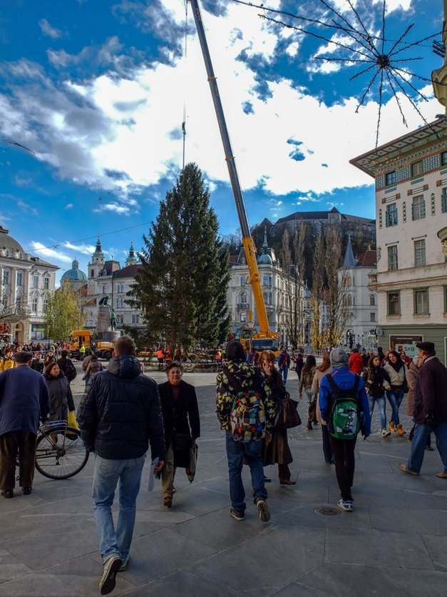 Fotogalerija čarobno okrašene prestolnice (foto: Aleš Pavletič)