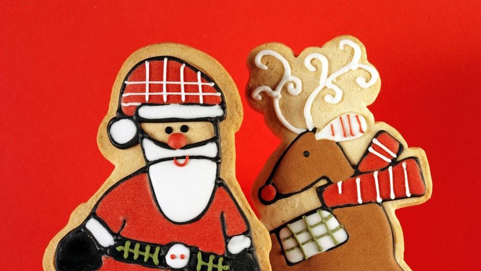 Živali kot božični simboli (foto: profimedia)