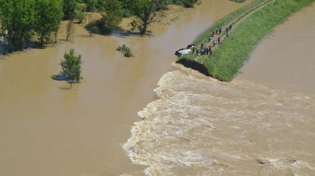Dobrodelni koncert za živali s poplavljenih področij Bosne (foto: profimedia, Vedrana fb)