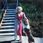 Fotografije Marilyn Monroe, ki jih javnost še ni videla (foto: profimedia)