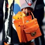 Novi modni trendi za šolskimi klopmi (foto: predalič, profimedia, shutterstock)