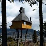 Hišica na drevesu, Japonska (foto: profimedia)