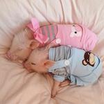 Pujska Priscilla in Poppleton sta spletni zvezdi (foto: profimedia)