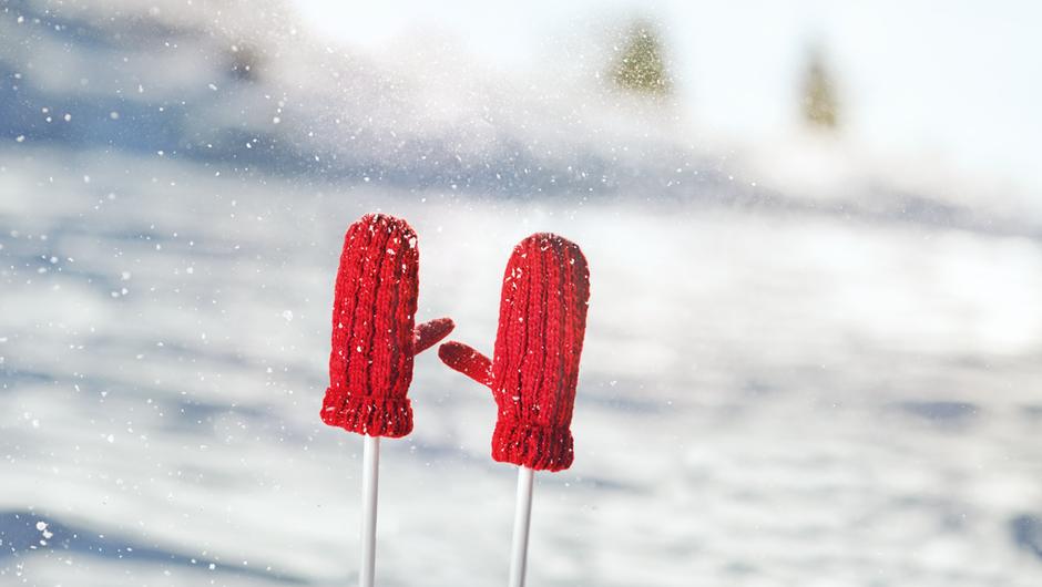 Na sneg z zavarovalno polico (foto: Zavarovalnica Triglav)