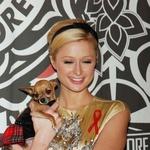 Paris Hilton zaradi smrti psičke ovita v žalost (foto: Profimedia)