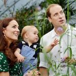 Kate Middleton ne bo več imela otrok (foto: Kate in Wiiliam z družino)