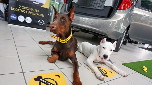 Oplovi prodajni saloni so prijazni psom (foto: Opel)