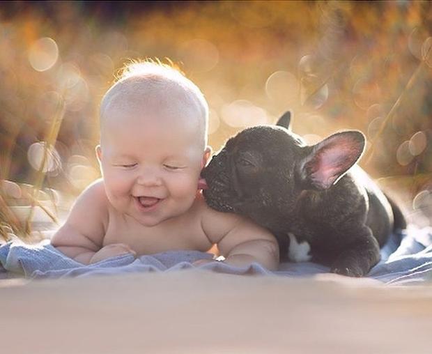 """""""Ko sem videla, kdaj se je buldog rodil, sem vedela, da nam je usojen,"""" je o psu, ki ga ima …"""