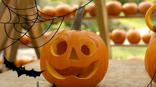"""Noč čarovnic je morda res ameriški praznik, vnese pa čudovito jesensko vzdušje tudi v naše kraje. Najprej si oglej """"osnovni recept"""" za dolbenje strašljive buče. (foto: Profimedia)"""
