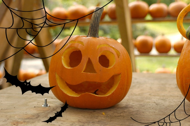 """Noč čarovnic je morda res ameriški praznik, vnese pa čudovito jesensko vzdušje tudi v naše kraje. Najprej si oglej """"osnovni …"""