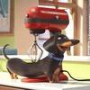V kino prihaja fantastična animirana komedija