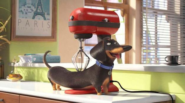 V kino prihaja fantastična animirana komedija (foto: Profimedia)