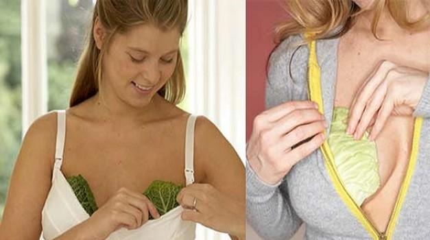 VIDEO: To je pravi razlog, zakaj si ženske na prsi dajejo liste zelja! (foto: PrtSc Youtube)