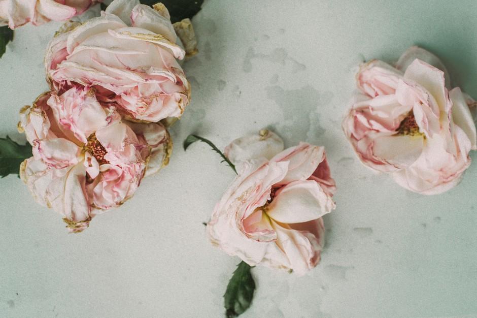 Globoko spoznanje: 5 največjih obžalovanj ob koncu življenja (foto: Unsplash.com/Daria Shevtsova)