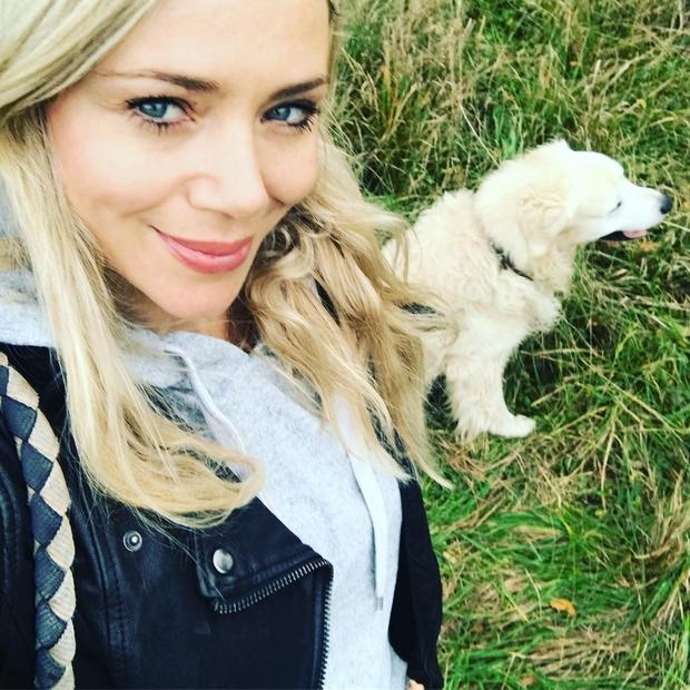 Yoda je kosmatinec, ki se sprehaja v družbi znane slovenske igralke Katarine Čas. Ta na svojem Instagram profilu redno objavlja …