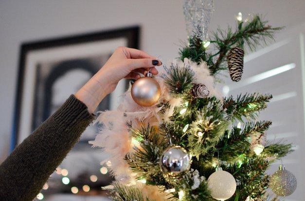 Pozabi na okrašeno smrečico za božič! TO je nov trend, ki je obnorel Instagram ... (foto: Unsplash/Element 5 Digital)