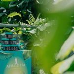 Pozdravili smo lepotno novost meseca: Tu je nova Afroditina TROPICAL Marmelada! (foto: Promocijsko gradivo)