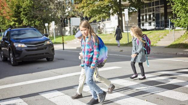 Vedno ustavite na prehodu za pešce (foto: shutterstock)