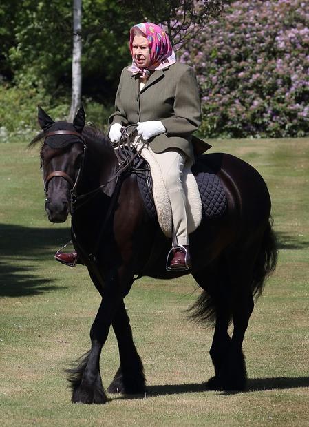 👉 Kraljica z veliko začetnico! 👏🏻 Fotke na konju so fotografirali britanski mediji, to pa je za kraljico prvi stik …