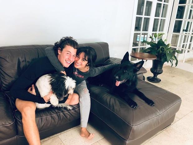 👉Kakšna škodaaaa! Camila Cabello in Shawn Mendes sta simpatijo drug do drugega gojila precej let, ob sodelovanju pri pesmi Señorita …