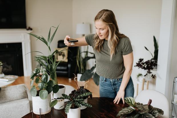 """Žal večina sobnih rastlin kisik sprošča podnevi, ponoči pa ne. A obstajajo tudi rastline, ki ti bodo kisik """"dostavljale"""" med …"""