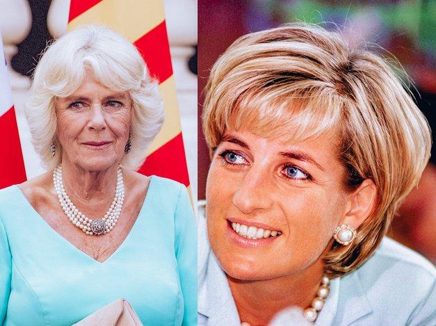 """Skrivnosti iz spalnice princese Diane: """"V postelji si natakni lasuljo, da boš videti kot Camilla"""" (foto: Profimedia)"""