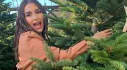 Imaš PRAVO božično drevo? Izvoli TRIK, kako preprečiš PADANJE iglic (vedno deluje!)