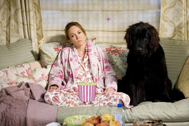 NEKONSISTENTNA PRAVILA IN PREPOVEDI Če pa je tako ljubko, ko zaspi na kavču! Pomislite še malo na vašega kosmatinca. Kužki …