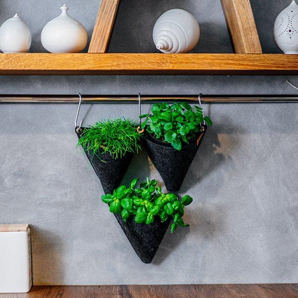 Zelene in sobne rastline so pomembne za vaše duševno zdravje (foto: Sanjski šopek)