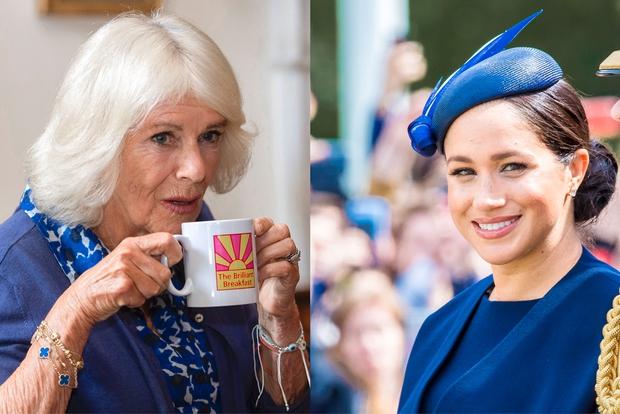 Čeprav so mnogi kraljevi poznavalci prepričano zatrjevali, da je prav žena princa Charlesa, Camilla, tista članica kraljeve družine, ki je …