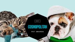 GLASOVANJE za Cosmopolitan PET Awards 2021 je odprto 🐶 (in glasuješ lahko TUKAJ 👇)